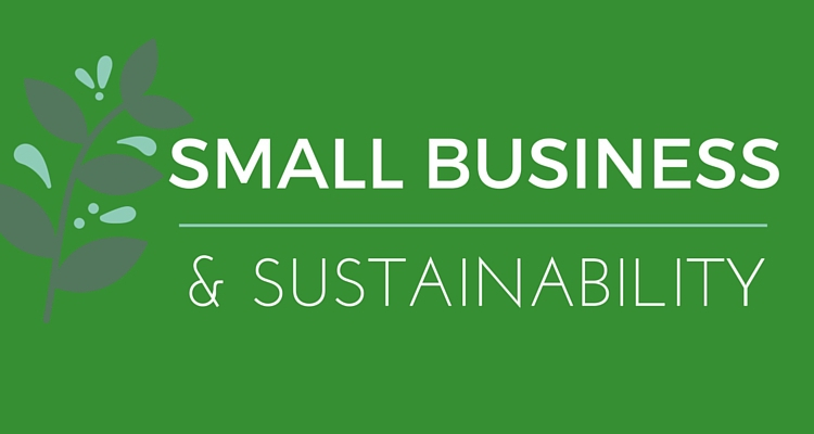 SUSTAINABILITY FOR SMALLER BUSINESSES